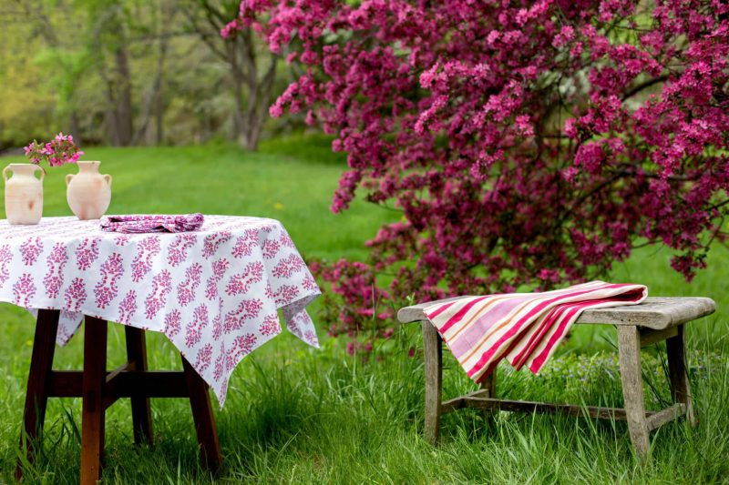 Table with pink tablecloth and bench with pink folded blanket in a field in front of a pink flowering tree
