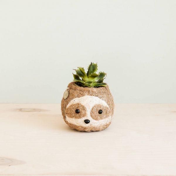 Sloth Coco Coir Planter