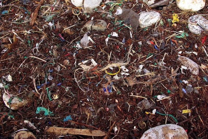 microplastics on seashore